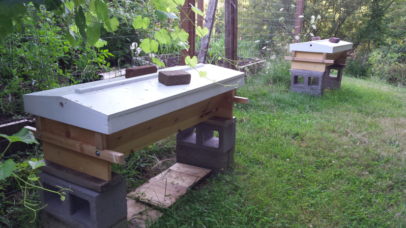 Reference Books I Found Helpful: Top Bar Beekeeping, Organic Practices For  Honeybee Health By Les Crowder And Heather Harrell